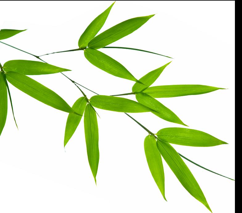 Bouillotte sèche - feuille bambou
